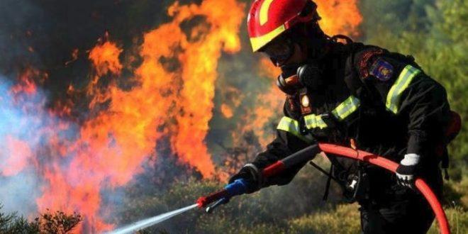 Πυρκαγιά στην Κεφαλονιά: Ολονύχτια μάχη με τις φλόγες