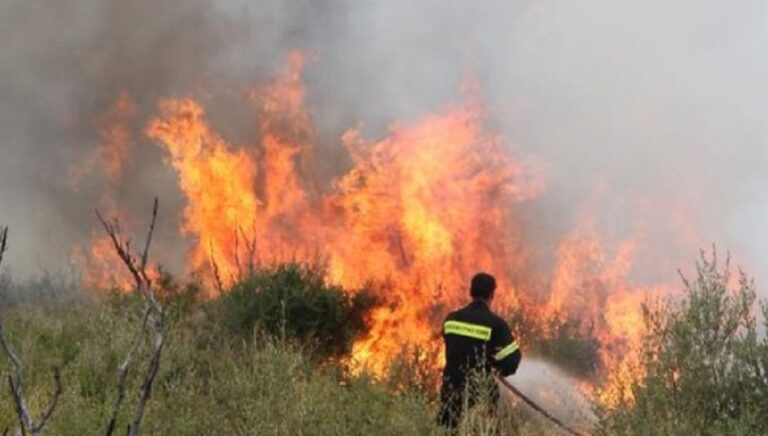 Πυρκαγιά σε εξέλιξη στην Αλόννησο – Εκκενώθηκε ξενοδοχείο