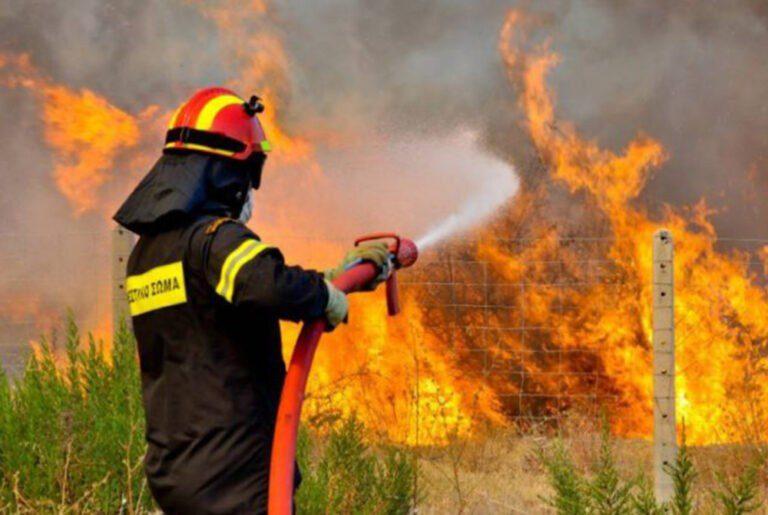 Φωτιά στη Λούτσα