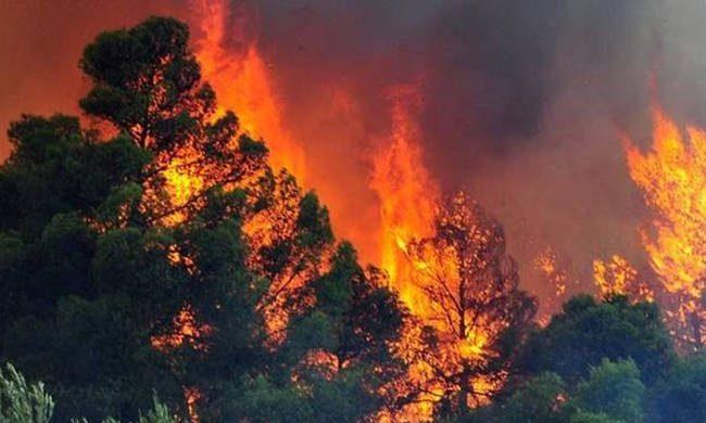 Νέο μέτωπο φωτιάς στην Πεντέλη!