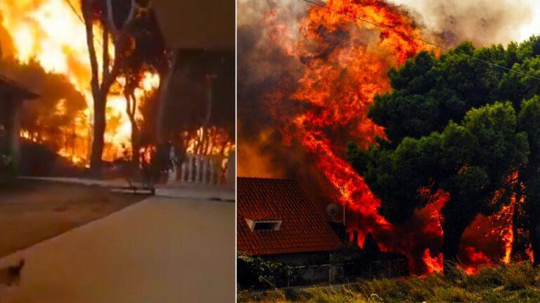Αξιωματικός Πυροσβεστικής: «Ήταν από τις χειρότερες πυρκαγιές που έχω συναντήσει»