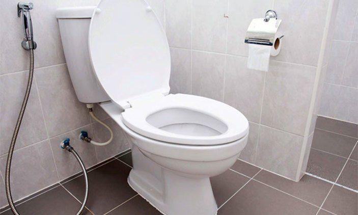 Βρήκε πύθωνα στη… λεκάνη της τουαλέτας του (vid)