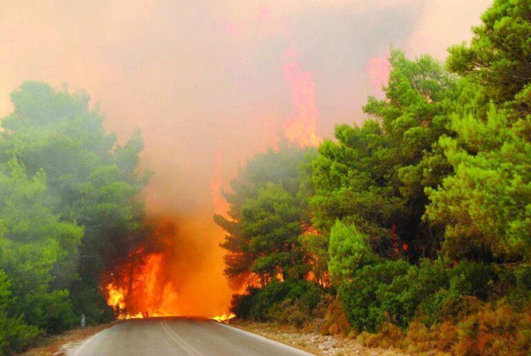 Πυρκαγιά στον Βρανά Μαραθώνα