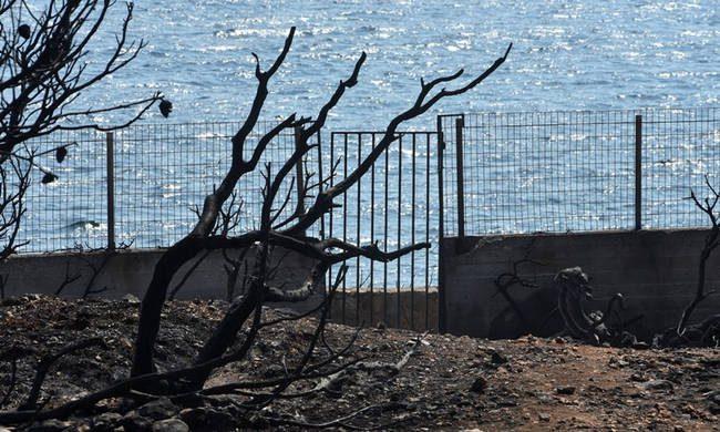 Στους 95 οι νεκροί της πυρκαγιάς στο Μάτι