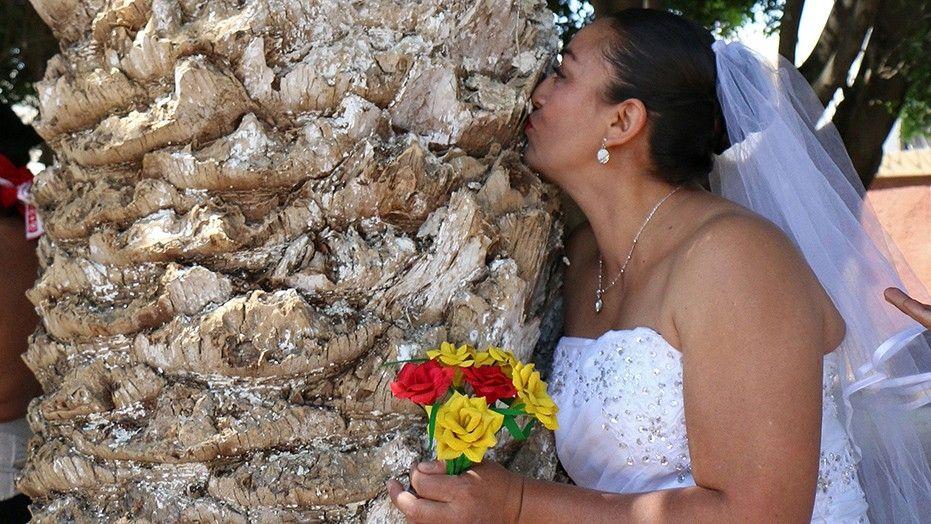 Οι γυναίκες στο Μεξικό… Παντρεύονται τα δέντρα (vid)