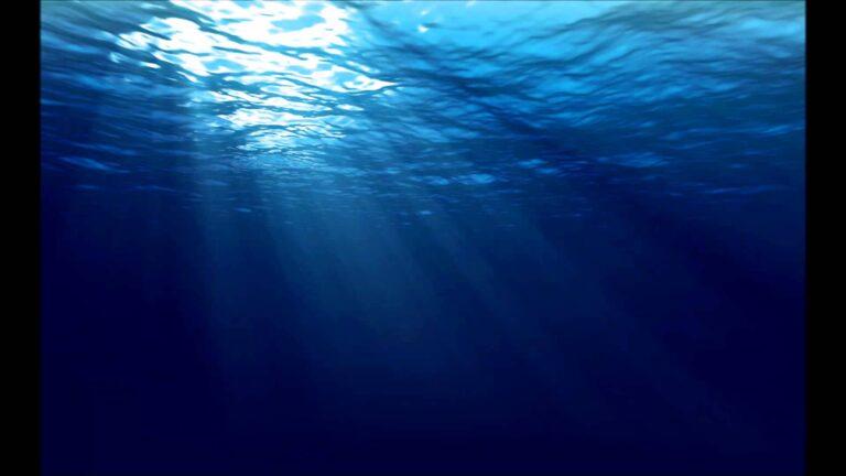 Δεν θα ήθελες να κολυμπάς και να δεις…αυτό (pic)