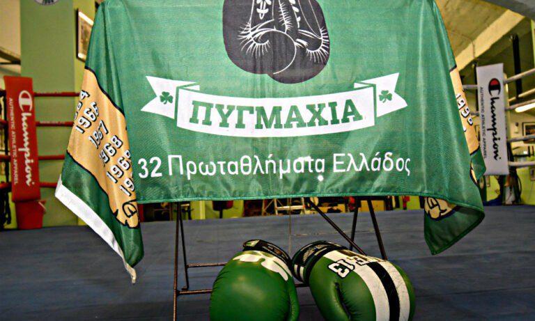 Πυγμαχία: Πλήθος κόσμου στον αγιασμό του Παναθηναϊκού (pics)