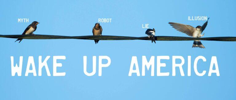 «Tα πουλιά δεν είναι αληθινά» υποστηρίζει νέο κίνημα (vid)