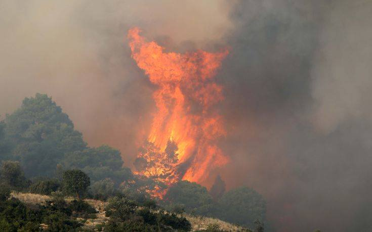 Η περιοχή που κάηκε στη Σιθωνία είναι προς πώληση εδώ και δέκα χρόνια - Sportime.GR