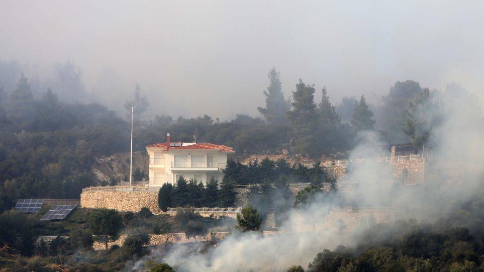Φωτιά στη Χαλκιδική: Επεσαν οι άνεμοι – Σε ύφεση το πύρινο μέτωπο - Sportime.GR