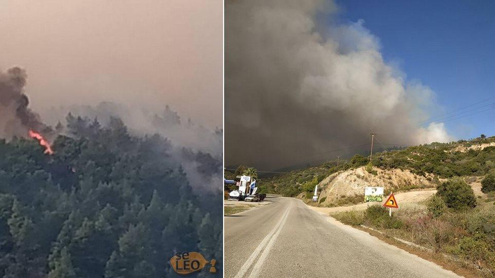 Η φωτιά στη Σιθωνία Χαλκιδικής έχει απλωθεί στα τρία χιλιόμετρα – Εκκενώνεται ο Κάμπος (vid)