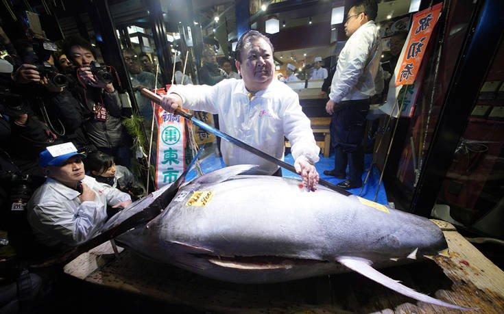Το ψάρι που κοστίζει 1,5 εκατ. ευρώ (pics&vid)