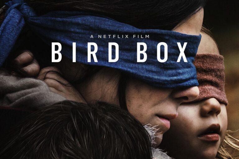 Το Bird box του Netflix Έγινε viral αλλά όχι για τον καλύτερο λόγο