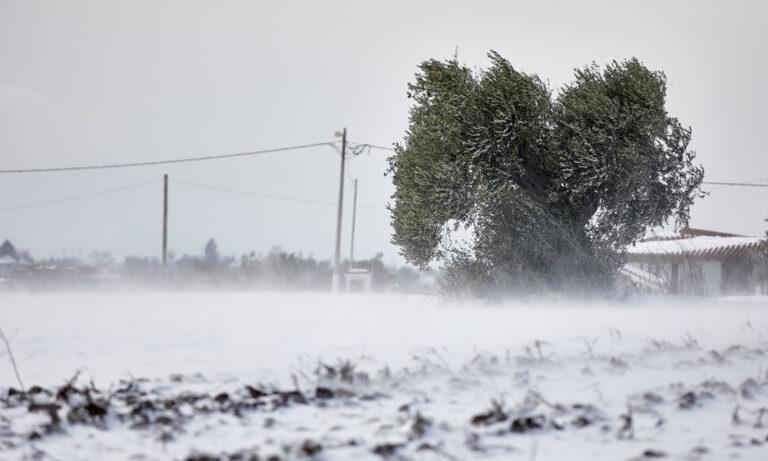Χιόνια και βροχές φέρνει ο «Φοίβος» (vid)
