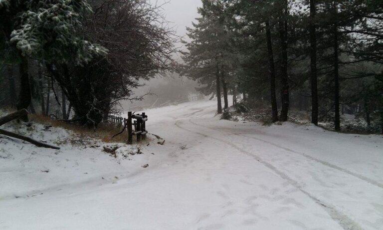Έφτασε η κακοκαιρία «Χιόνη», χιονίζει στην Πάρνηθα
