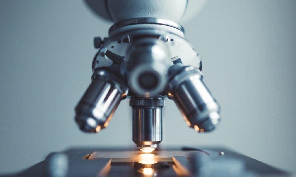 Κάτω από το μικροσκόπιο – Δεν θα πιστεύετε στα μάτια σας (vid)