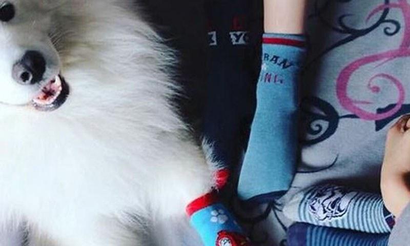 Παγκόσμια Ημέρα για το Σύνδρομο Down – Γιατί όλοι φορούν αταίριαστες κάλτσες