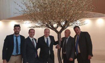ΔΟΕ: Η ελιά του γλύπτη Παναγιωτίδη κοσμεί τα γραφεία της