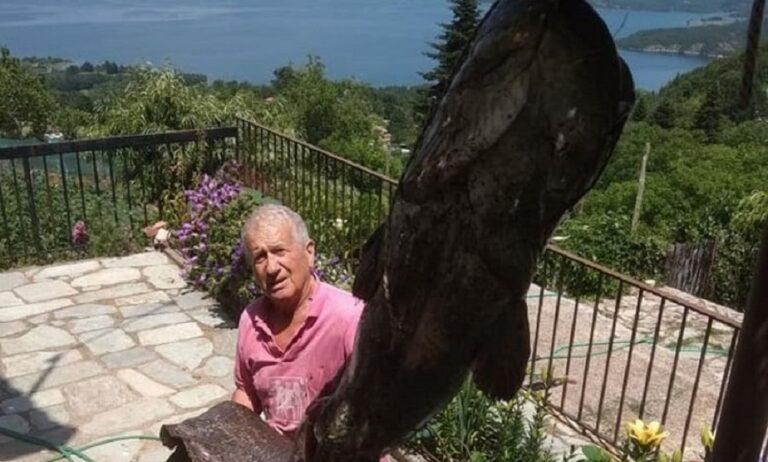 Γουλιανός-τέρας 70 κιλών στη λίμνη Πλαστήρα