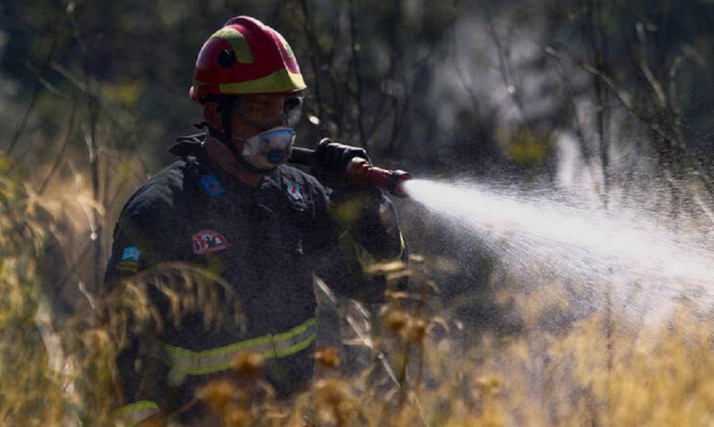 Μεγάλη φωτιά στην Τανάγρα: Ισχυρές δυνάμεις στο σημείο