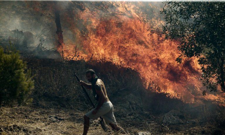 Φωτιά στον Βύρωνα κοντά στο θέατρο βράχων (vid)