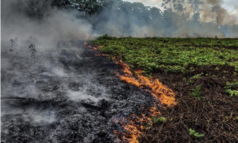 Αμαζόνιος: Σε κατάσταση έκτακτη ανάγκης λόγω της φωτιάς