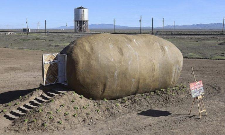 Airbnb: Διαμέρισμα σε σχήμα… πατάτας (pics)