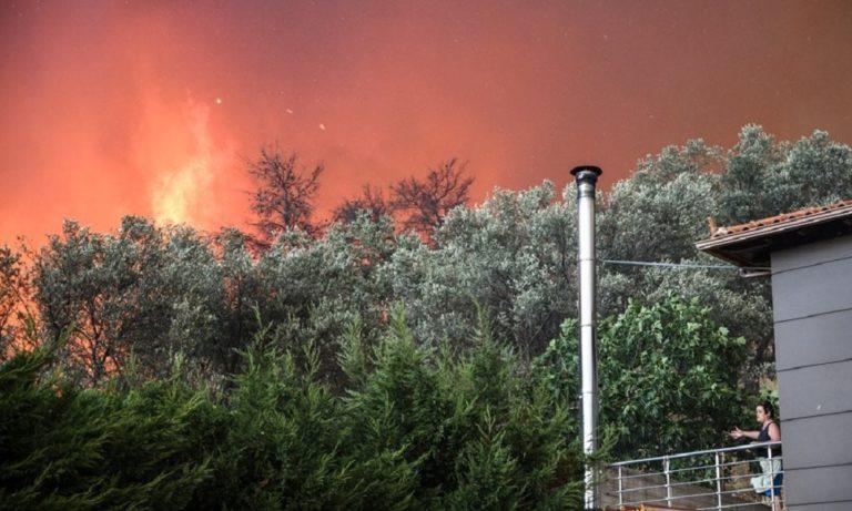 Φωτιά στην Εύβοια: