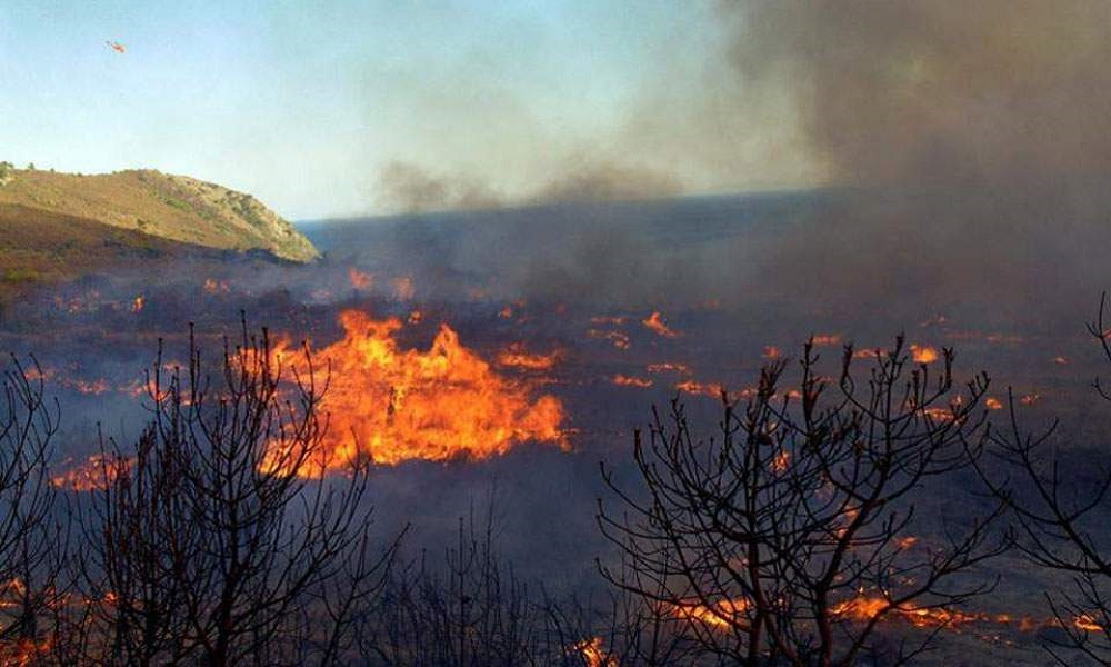 Θήβα φωτιά: Ανεξέλεγκτη η φωτιά κατευθύνεται στη θάλασσα