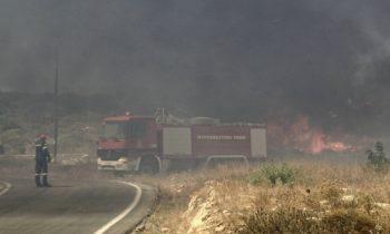 Φωτιά στην Ελαφόνησο