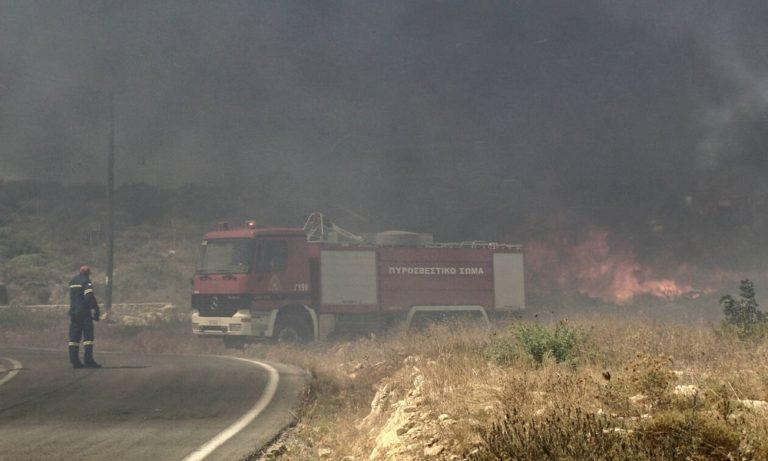 Φωτιά στην Ελαφόνησο: Στάχτες το 25% του νησιού! (vids)