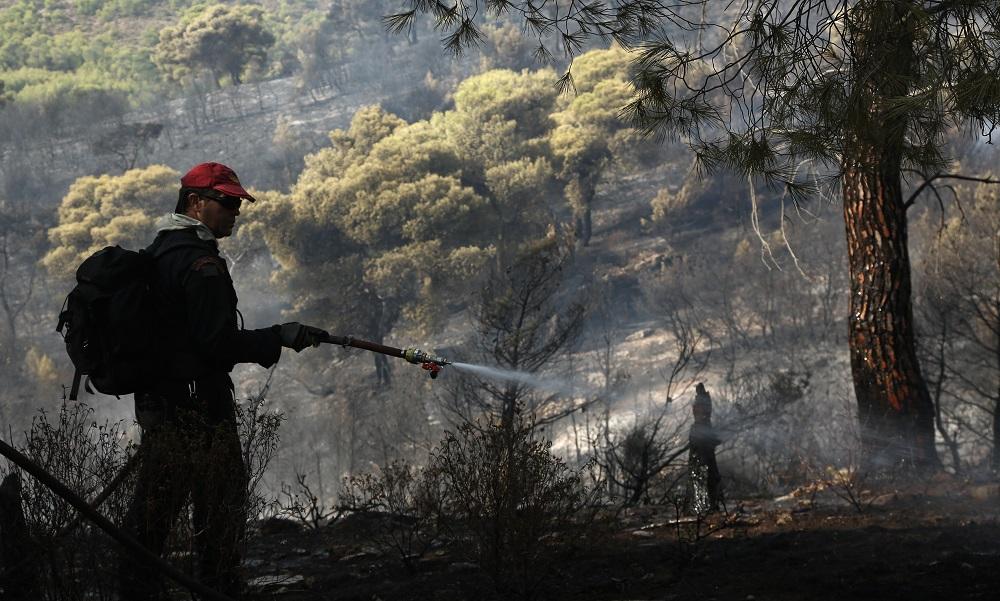 Φωτιά στη Νέα Μάκρη: Αναζητούν αυτόν που έβαλε τη φωτιά τα ξημερώματα της Πέμπτης
