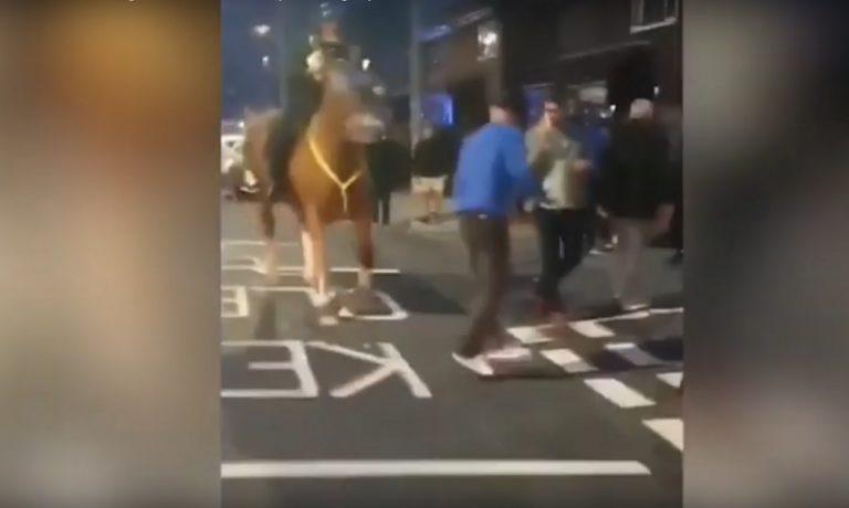 Οπαδός της Πόρτσμουθ ρίχνει γροθιές σε άλογο (!), καταλήγει με χειροπέδες (vid)
