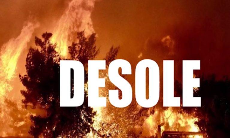 Sin boy – DESOLE: Χαμός στο Youtube με το νέο του τραγούδι