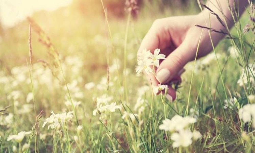 Είναι μεγάλη ευτυχία να μπορείς να δίνεις ευτυχία στους άλλους