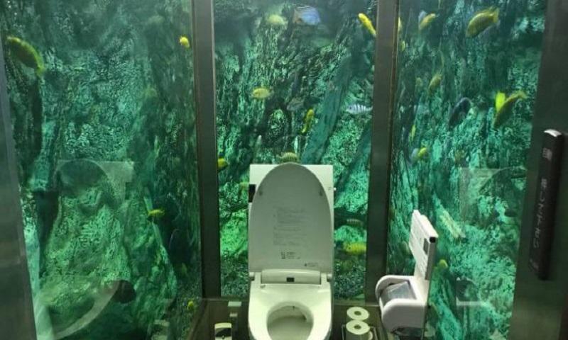 Viral: Καφετέρια με τουαλέτα μέσα σε ενυδρείο (vid)