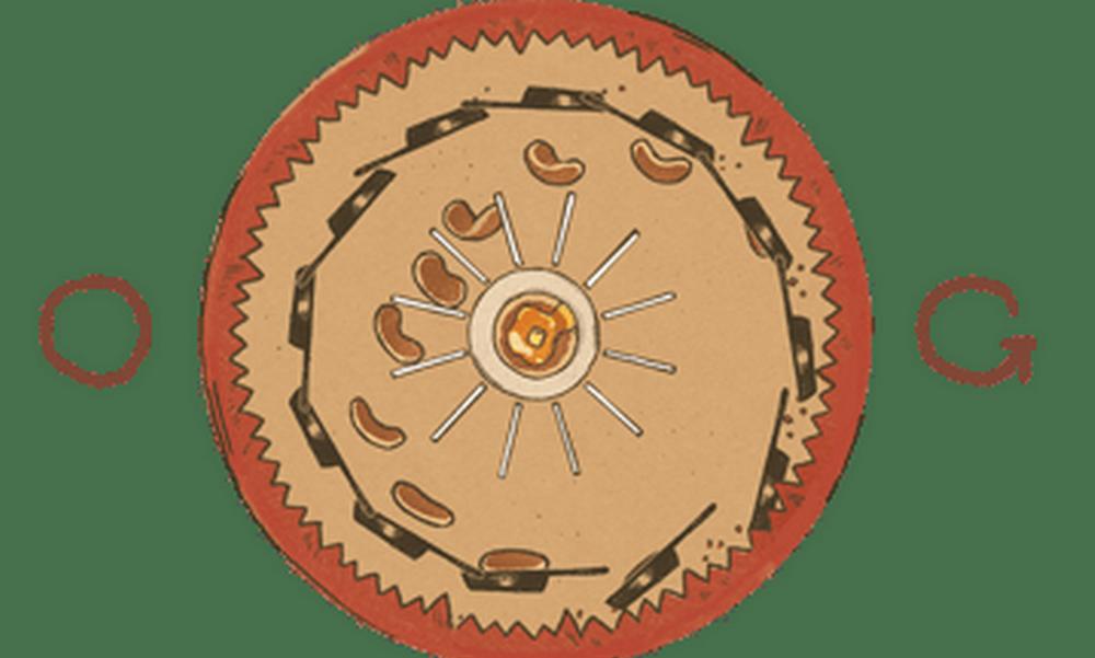 Google Doodle: Joseph Plateau – Η ανακάλυψη του Βέλγου φυσικού