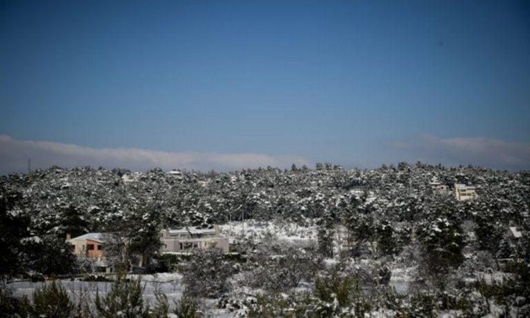 Καιρός  5/12: Παγετός κατά τόπους και βροχές