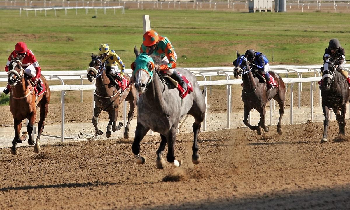 Markopoulo Park: Μεγάλος αριθμός νικητών στο ιπποδρομιακό στοίχημα κι αυτή την Κυριακή