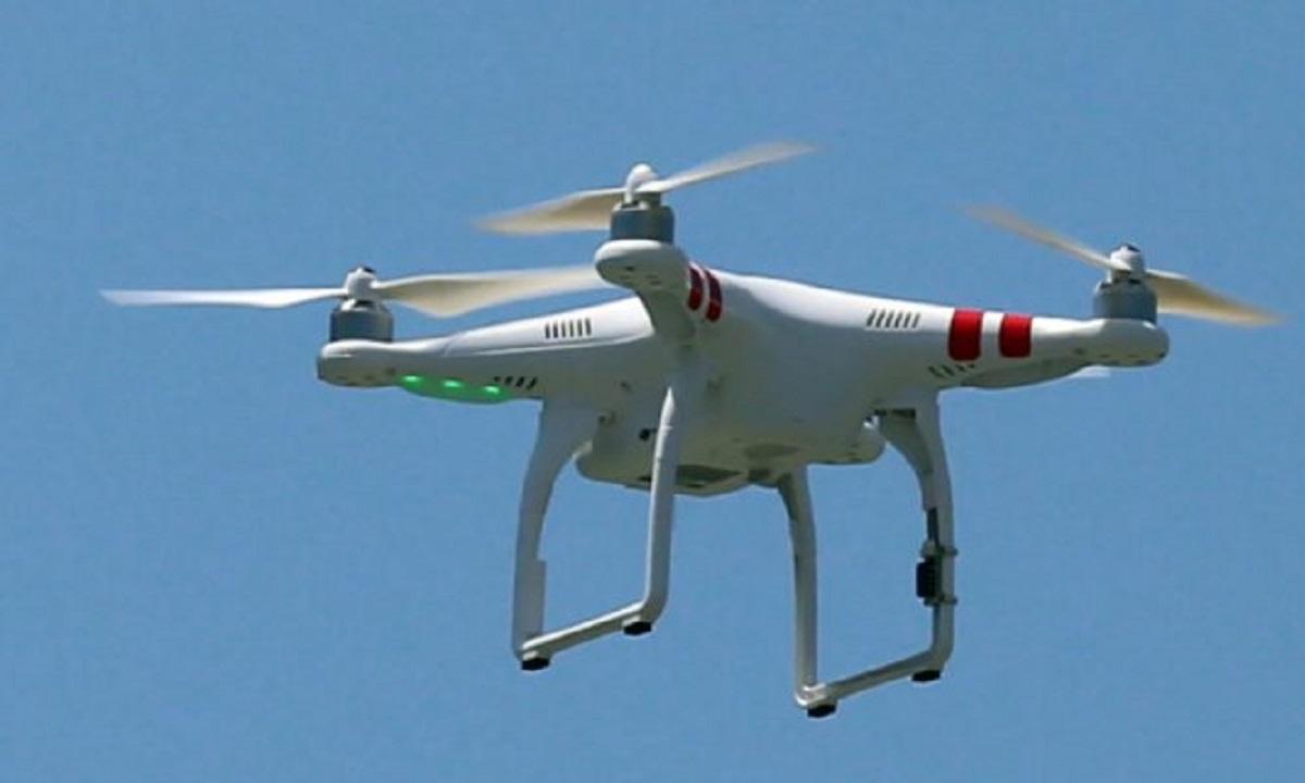Γύπας σήκωσε drone και έδωσε τον αριθμό του σε κοπέλα στην απέναντι ταράτσα! (vid)