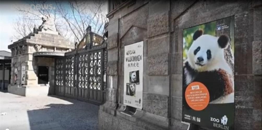 Κορονοϊός: Οι ζωολογικοί κήποι της Ευρώπης απειλούνται λουκέτο! (vid)