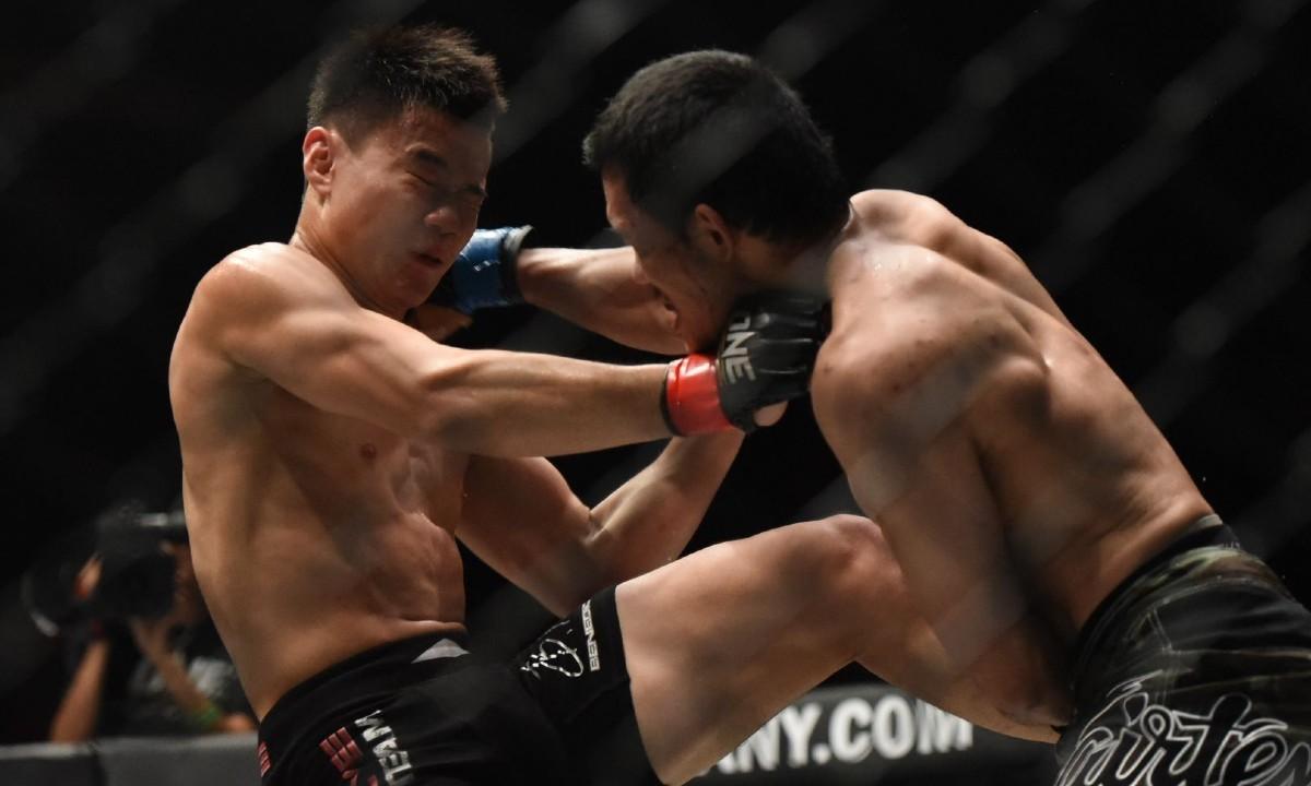 Viral: Αθλητές του MMA παλεύουν από… απόσταση (vid)