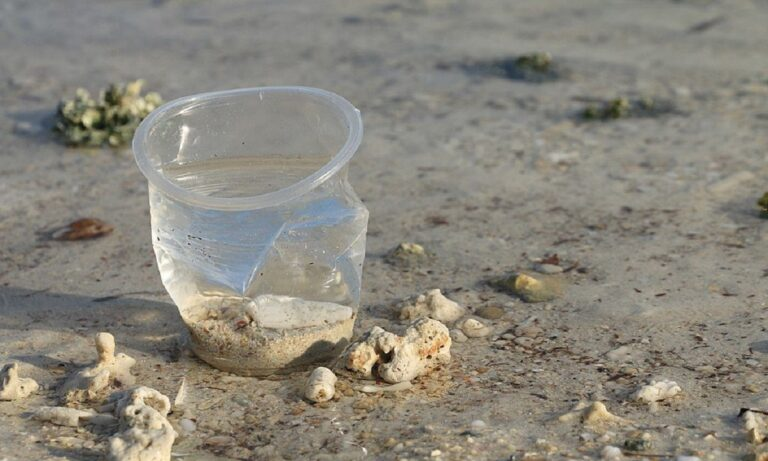 Τέλος στα πλαστικά μιας χρήσης από το 2021