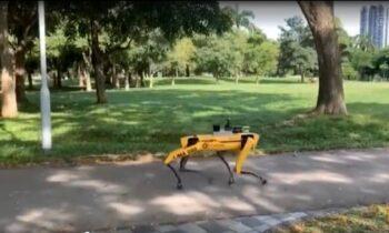 Κορονοϊός - Σιγκαπούρη: Ρομπότ... Κέρβερος επιθεωρεί για συνωστισμό! (vid)