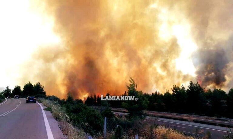 Φωτιά στον Μαρτίνο: Κίνδυνος να περάσει την Εθνική Οδό (pics)