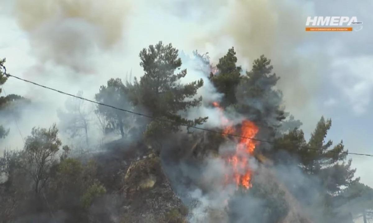 Ζάκυνθος: Υπό μερικό έλεγχο φωτιά σε δασική έκταση (vid)