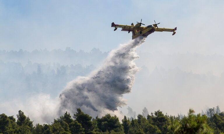 Φωτιά στην Αίγινα: Μεγάλη επιχείρηση της Πυροσβεστικής