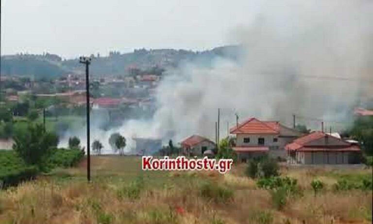 Βασιλικό: Στις αυλές των σπιτιών έφτασε η φωτιά