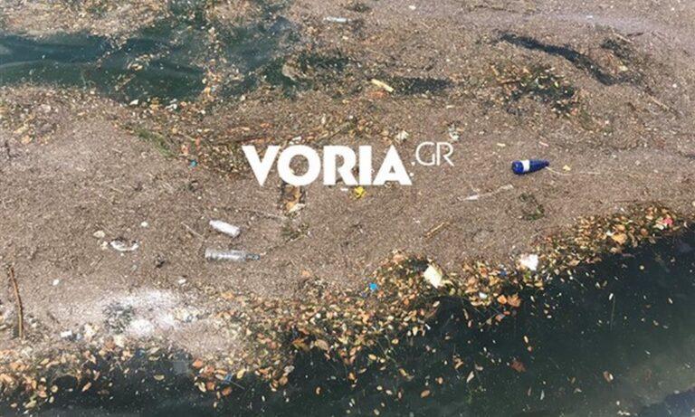 Θερμαϊκός: Γέμισε σκουπίδια και ανέλαβε η Αλκίππη (vids)