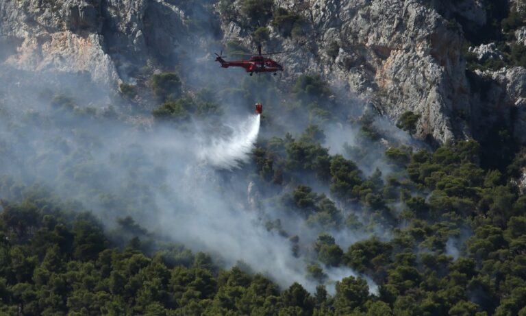Πυροσβεστική: 63 πυρκαγιές σε μία ημέρα